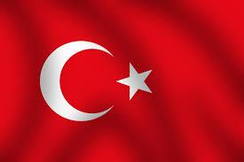 فراگیری زبان ترکی استانبولی