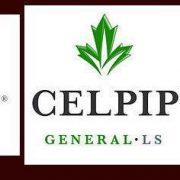 آزمون CELPIP چیست ؟