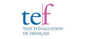 تفاوت بین آزمون TEF و TCF زبان فرانسه