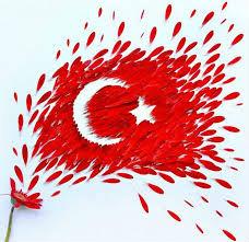 آموزش زبان ترکی استانبولی برای مبتدیان