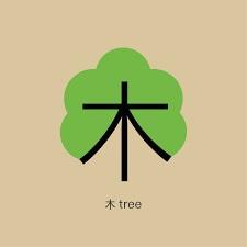 شروع یادگیری زبان چینی