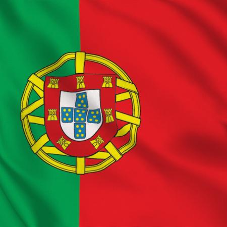 بهترین راه برای یادگیری زبان پرتغالی