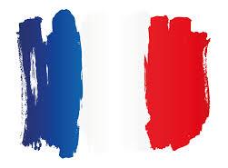 چرا زبان فرانسوی یاد میگیریم