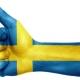 افعال رایج زبان سوئدی