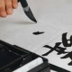 آموزش انواع ضمایر چینی